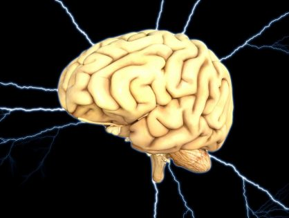 The Brain (Its Perception and Thought Processes) and how They Affect Language