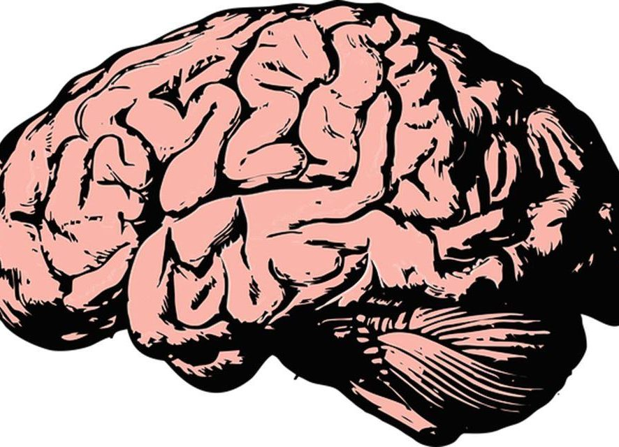 How You Damage Your Brain Without Knowing
